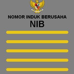 Jasa Pengurusan Nib ( Nomor Induk Berusaha) Jakarta
