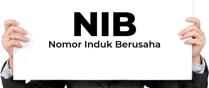 Begini Caranya Pengurusan NIB Dengan OSS