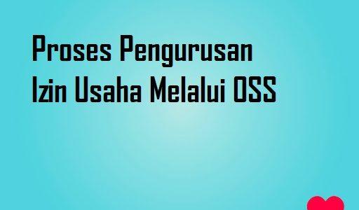 Proses Pengurusan Perizinan Berusaha Melalui OSS
