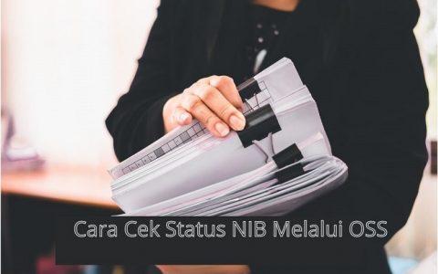 Cara Mengetahui Status NIB melalui OSS